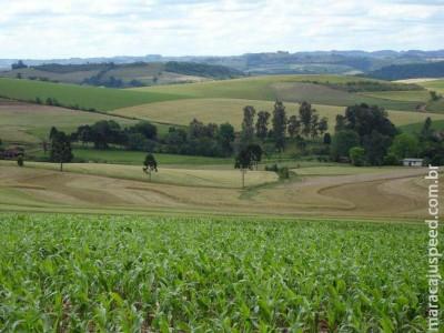 Certificado de Cadastro de Imóvel Rural pode ser pago sem multas até sábado (14)