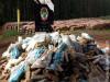 Maracaju: Polícia Civil incinera mais de 03 toneladas de drogas