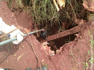 Maracaju: Bombeiros atendem ocorrência de cachorro que convulsiona e acaba caindo em fossa séptica desativada