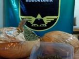 Maracaju: PRE BOP Vista Alegre apreende 2 kg de droga rara na rodovia MS-164