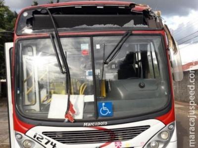 Árvore cai sobre ônibus e interrompido itinerário no Tiradentes