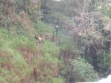 Orgulho de ser sul-matogrossense. A natureza é a maior riqueza da nossa querida fronteira. Não o crime organizado.