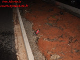 Maracaju: Bombeiros atendem à incêndio criminoso no Bairro Jardim Dom Bosco