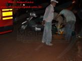 Maracaju: Bombeiros atendem acidente envolvendo motociclista e animal silvestre na Rua Luís Porto Soares