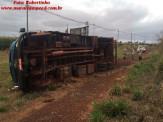 Maracaju: Caminhão com bezerros tomba na BR-267
