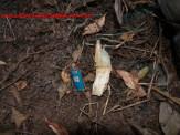 Maracaju: Ossada humana é encontrada próximo a Escola Agrícola