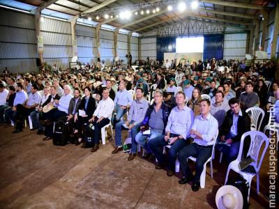 Produção de soja em MS  deve ultrapassar 10 milhões de toneladas na safra 2018/19