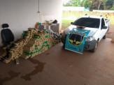 Maracaju: PRE encontra pick-up recheada com 811 kg de maconha na MS-462