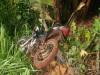 Maracaju: Acidente envolvendo motocicleta e veiculo Citroen deixam prejuízos materiais