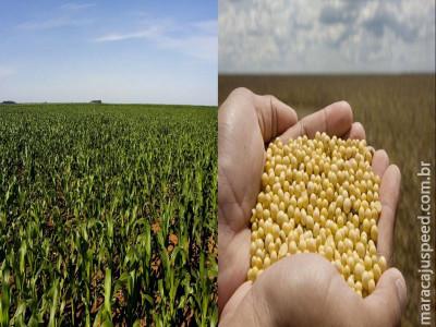 FMC estará no Centro-Oeste para destacar desempenho do manejo químico e biológico