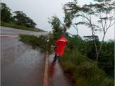 Maracaju: Corpo de Bombeiros desobstruem Rodovia MS-460, após árvore cair com fortes ventos