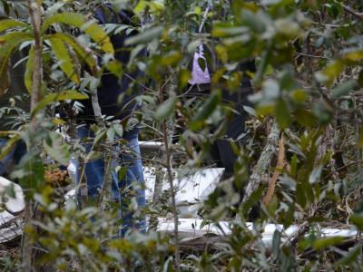 Causas da queda de avião que matou médico e esposa serão apuradas pelo Cenipa