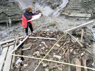 Dentes de 31 mil anos revelam novo grupo de humanos que viveu na Sibéria