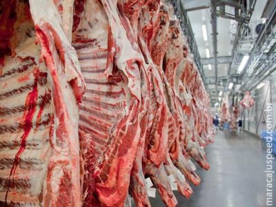 Missão dos EUA inspeciona frigoríficos brasileiros