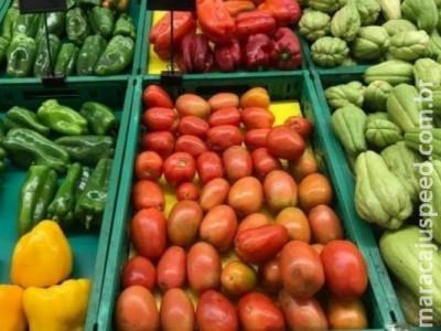 Tomate, batata e feijão ajudam a derrubar preço da cesta básica