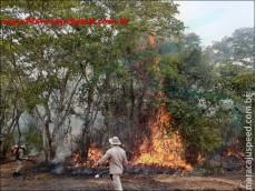 Bombeiros de Maracaju atuam no combate ao incêndio que destrói o bioma pantaneiro do MS