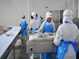 Novo coronavírus já começa a afetar indústria frigorífica de MS, informa Sicadems