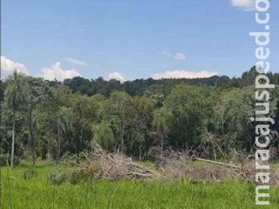 Proprietário rural é multado em R$ 29 mil por desmatamento ilegal de vegetação