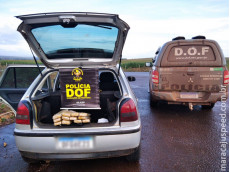 Maracaju: Veículo que seguia para Campo Grande com 85 kg de maconha foi apreendido pelo DOF