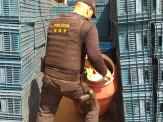 Caminhão com mais de 900 quilos de maconha foi apreendido pelo DOF durante a Operação Hórus