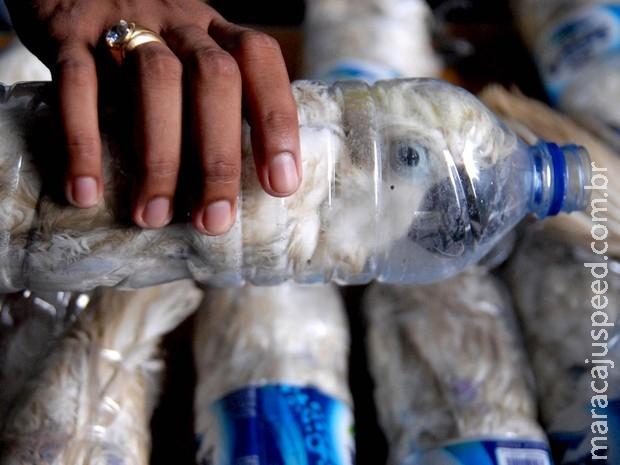 Indonésia encontra 24 aves em extinção presas em garrafas plásticas