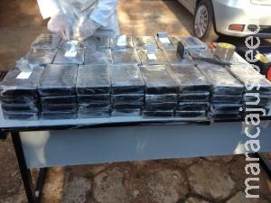 PF apreende arsenal, 114,3 kg de cocaína, dólares e carros de luxo
