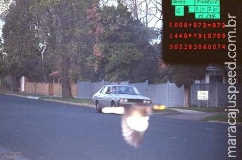 Motorista é salvo de multa por pássaro