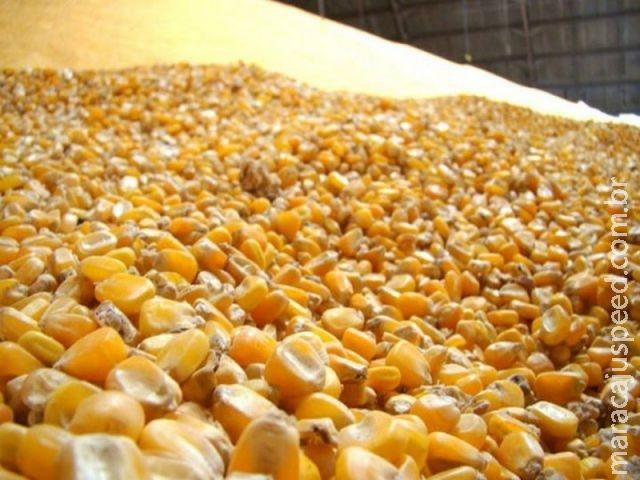 Venda de estoques e ofertas de subvenção garantiram renda ao produtor em 2016