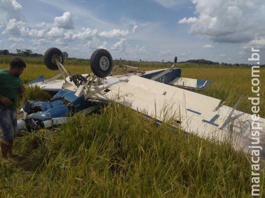 Polícia incinera 384 quilos de droga encontrada em avião que caiu no Paraná