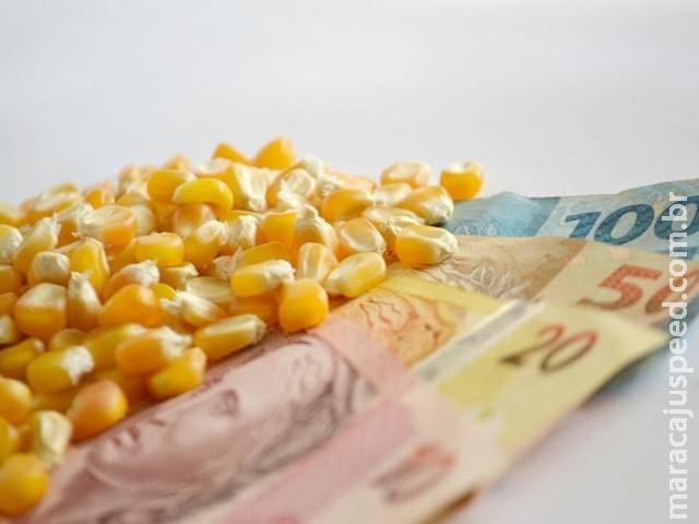 Aprosoja/MS garante pagamento de preço mínimo oficial ao produtor de milho de MS
