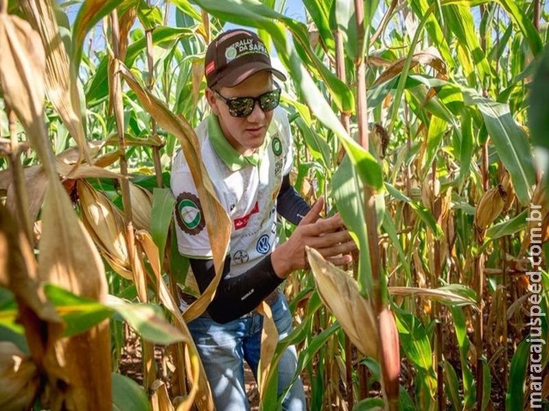 Rally da Safra 2017 avalia lavouras de milho safrinha em Dourados