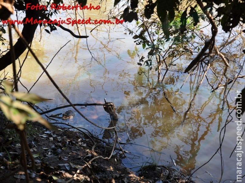 Corpo encontrado boiando em Rio Brilhante é de morador de Maracaju
