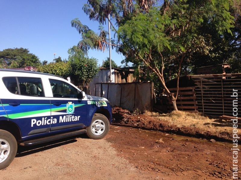 Maracaju: Polícia Militar é acionada para atender ocorrência de briga entre casal e localiza plantação de maconha