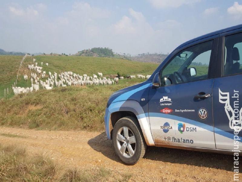 Mato Grosso do Sul recebe 3ª edição da Caravana da Produtividade, ação que leva mais produtividade aos pecuaristas de corte e leite