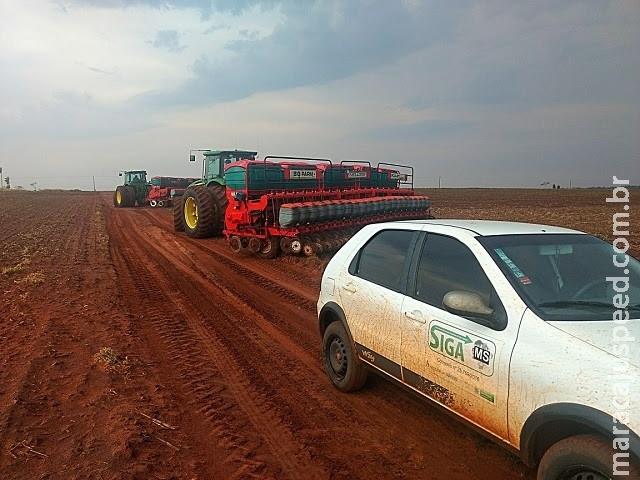 Com chuvas, plantio da soja avança em MS e chega a 60% da área
