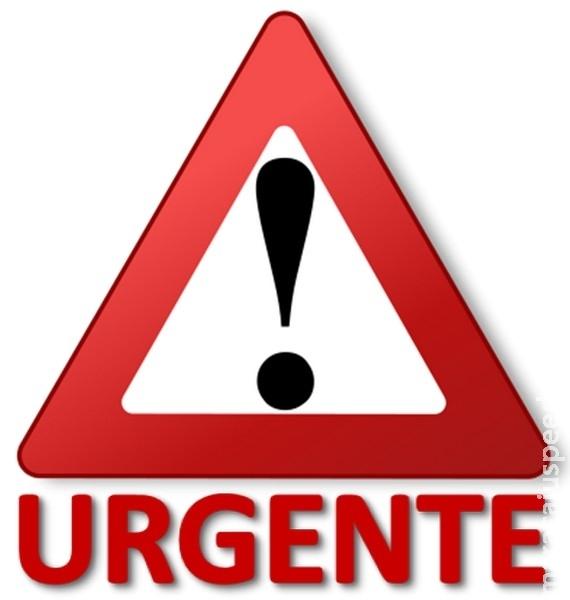 Urgente: Marido mata convivente possivelmente gestante com tiro na testa em Vista Alegre