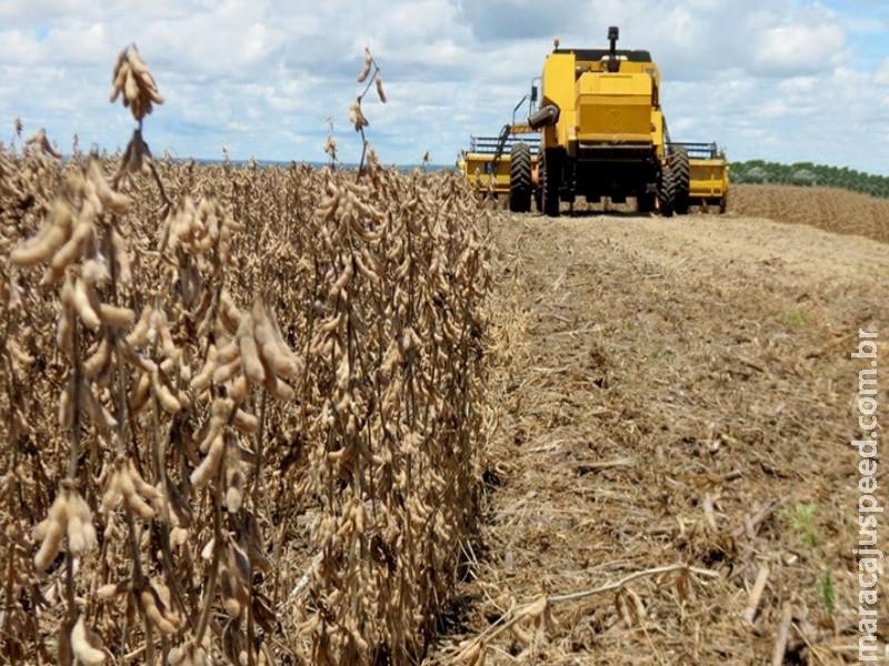 Colheita da soja avança em MS e atinge 34,5% da área