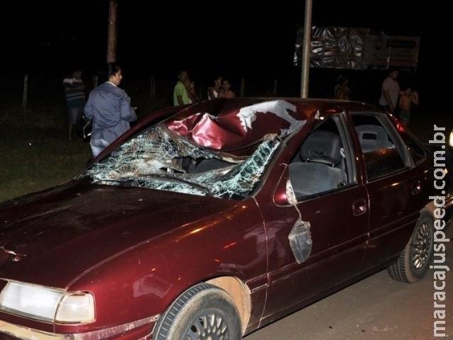 Cavalo morre e duas pessoas ficam feridas após carro atropelar animal
