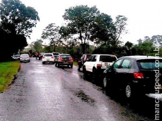 Espera em rodovia chega a 2 horas após queda de árvores na MS-450