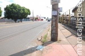 Bêbado, jovem de 22 anos é preso depois de bater em poste na Ceará