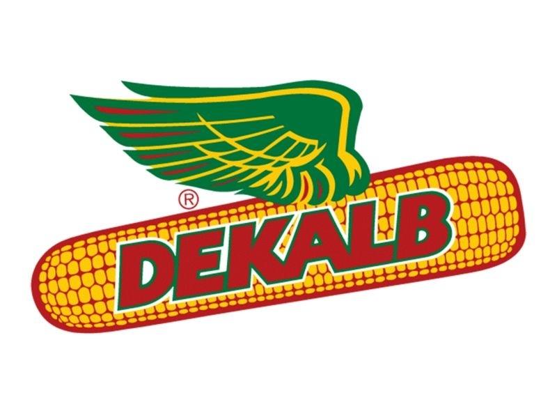 DEKALB apresenta cinco novos híbridos para a próxima safra verão e safrinha