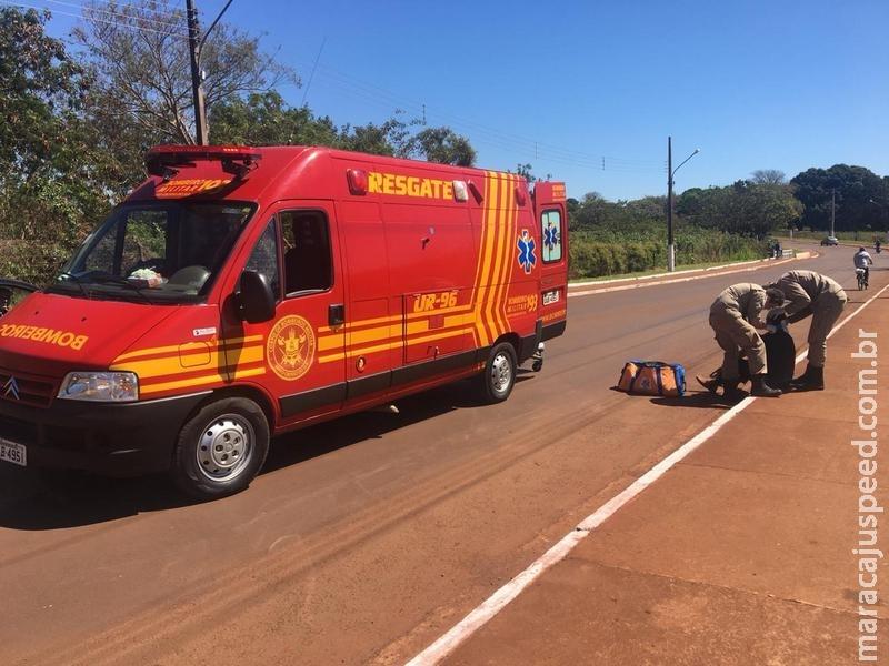 Maracaju: Ciclista cai ao atropelar cachorro