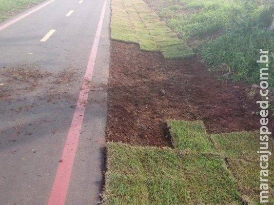 Após furto de grama, prefeito diz que pagará R$ 1 mil para quem denunciar