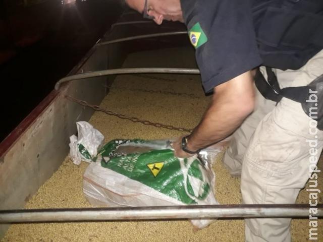 Caminhão é apreendido com maconha escondida em carga de soja