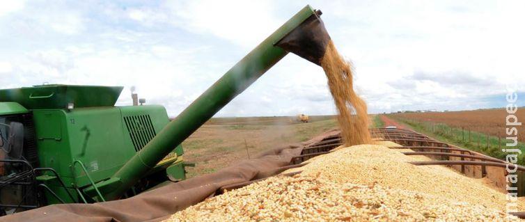 Safra de grãos de 2019 deve ser 3,1% maior que a de 2018, diz IBGE