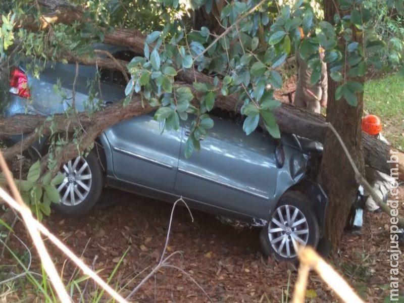 Motorista vai coçar olho, perde controle, cai em barranco e bate em árvore