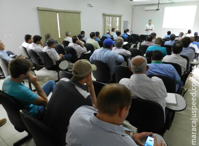 Maracaju: Resultados de pesquisas trazem ferramentas para potencializar produtividade da soja em MS