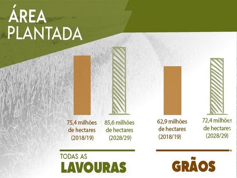 Em dez anos, área plantada será ampliada em 10,3 milhões de hectares no Brasil