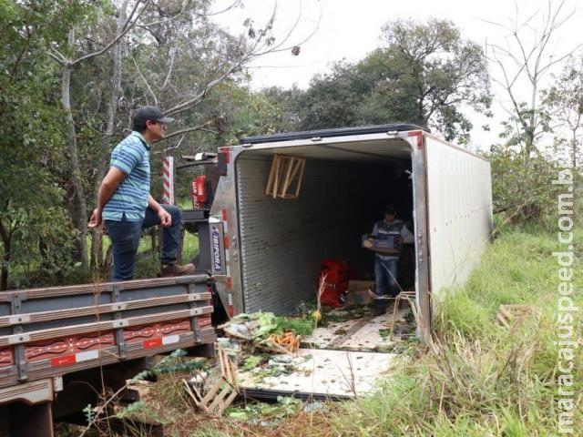 Motorista tenta desviar de capivara e tomba caminhão carregado com verduras