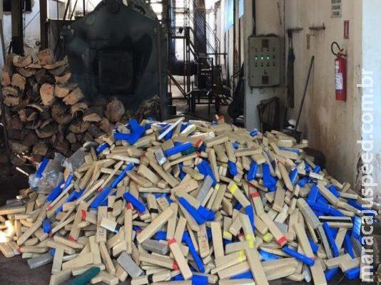 Polícia Civil incinera mais de 3 toneladas de drogas em MS